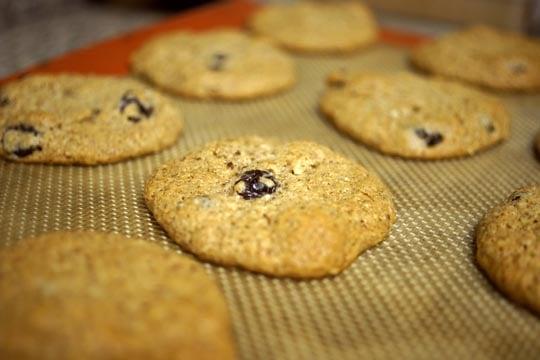 baked cinnamon raisin cookies on a cookie sheet
