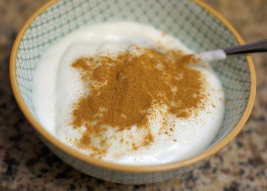 bowl of goat milk yogurt with cinnamon sprinkled on top