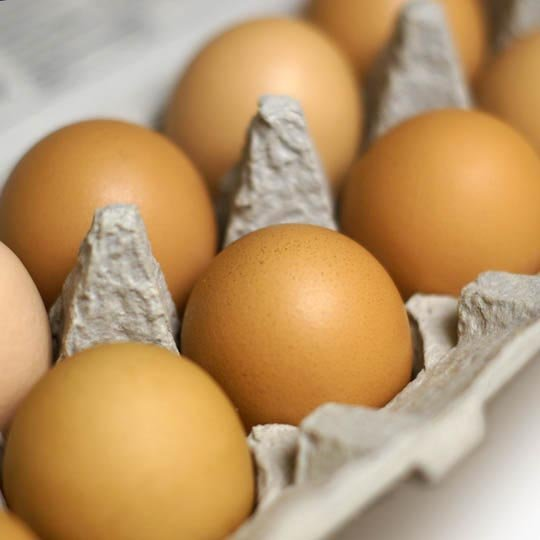 eggs in an egg carton