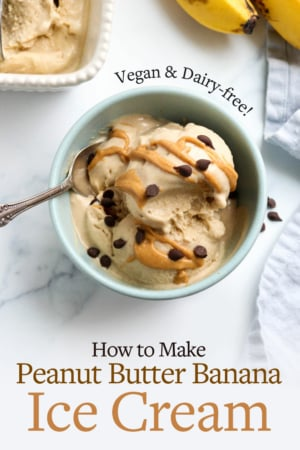 peanut butter banana ice cream pin