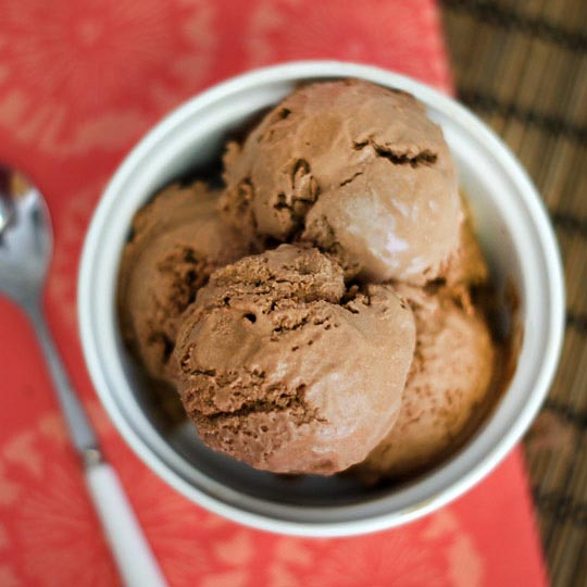 chocolate coconut milk ice cream in a small bowl