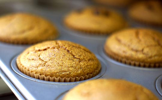 pumpkin spice muffins in a muffin tin