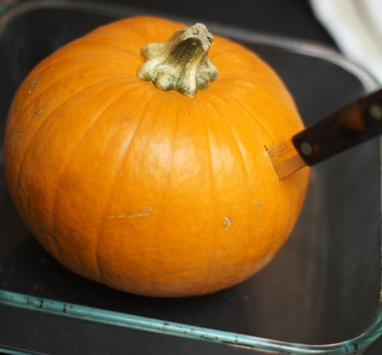 cutting open a small pumpkin
