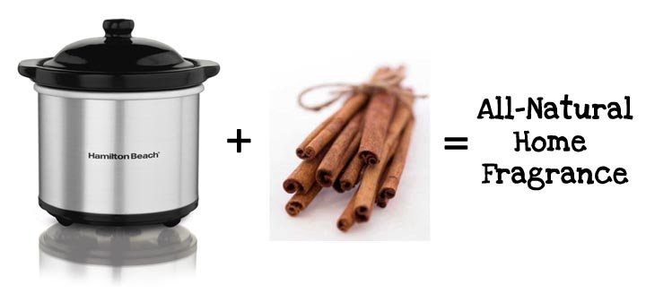 crockpot and cinnamon sticks