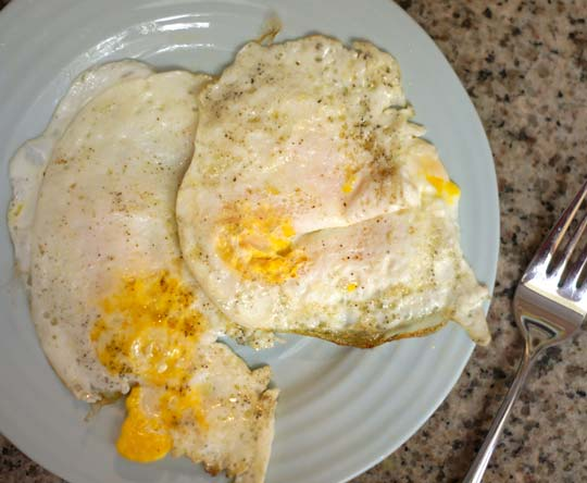 two fried eggs on a plate