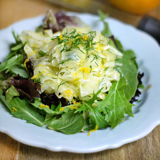 citrus fennel slaw on a plate