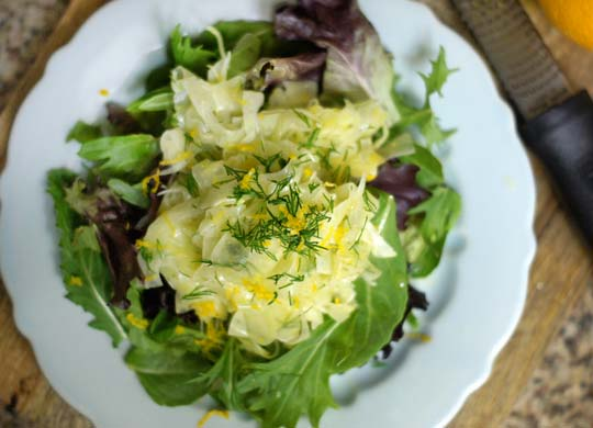 citrus fennel slaw on top of a salad