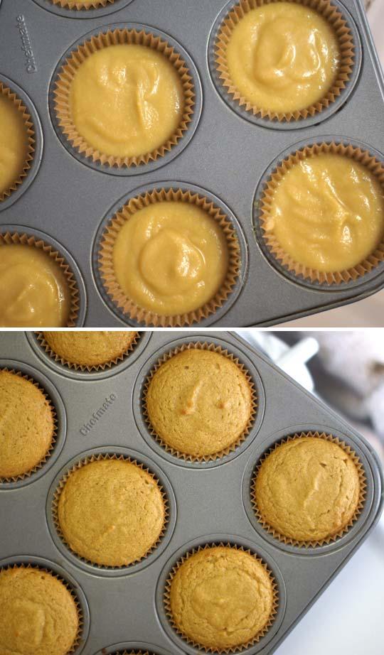 baked vanilla cupcakes in a cupcake tin