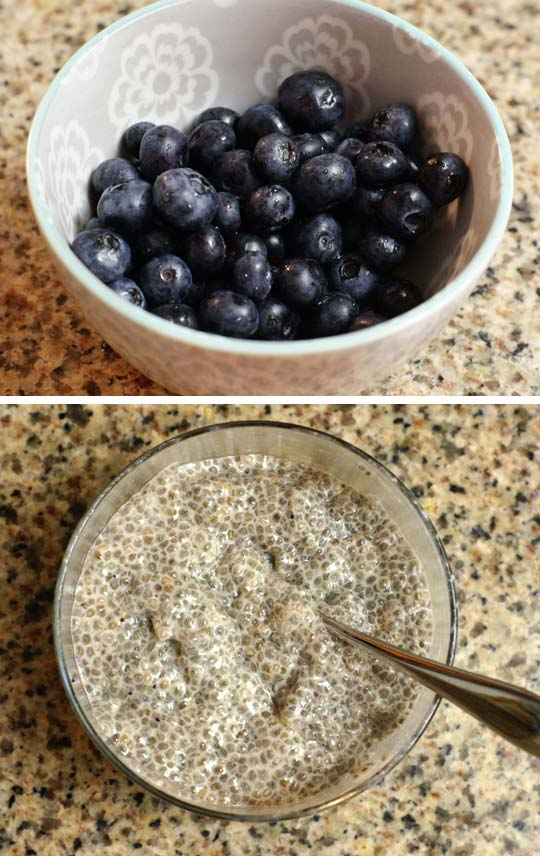 bowl of blueberries and a bowl of chia seed pudding