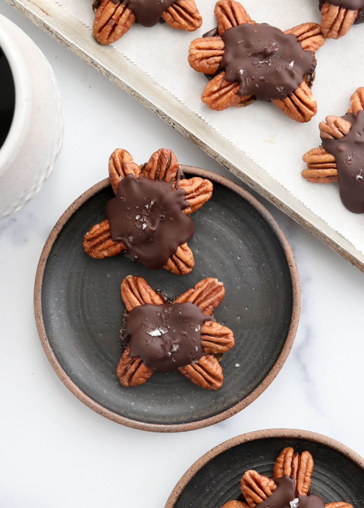two chocolate turtles on plate