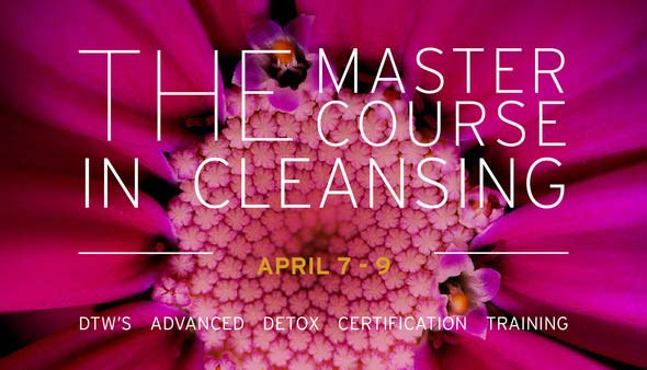 the master course in cleansing