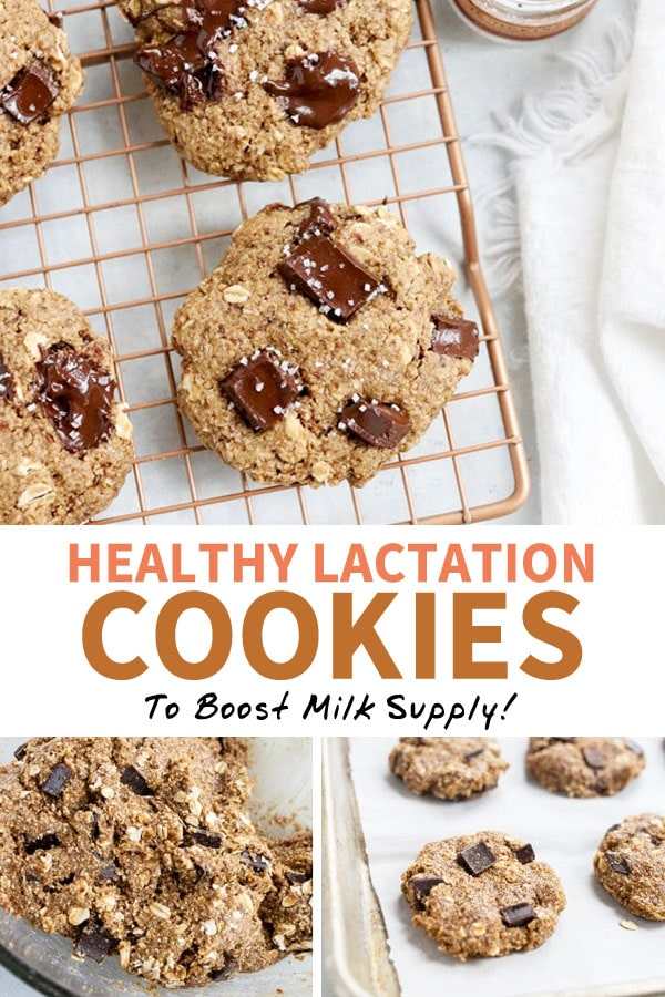 lactation cookies pin
