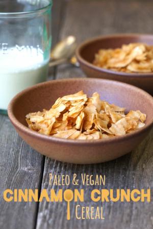Paleo and Vegan Cinnamon crunch cereal pin