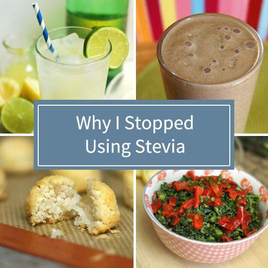 recipes with stevia