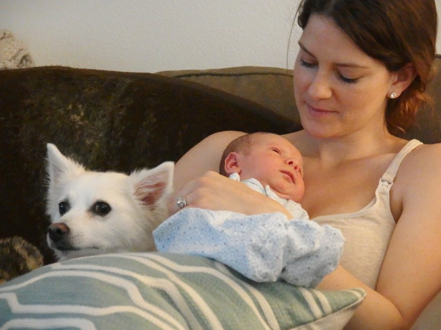 mom, dog, and baby on a couch