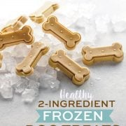 2-Ingredient Healthy Frozen Dog Treats pin