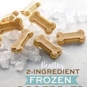 2-Ingredient Healthy Frozen Dog Treats pin