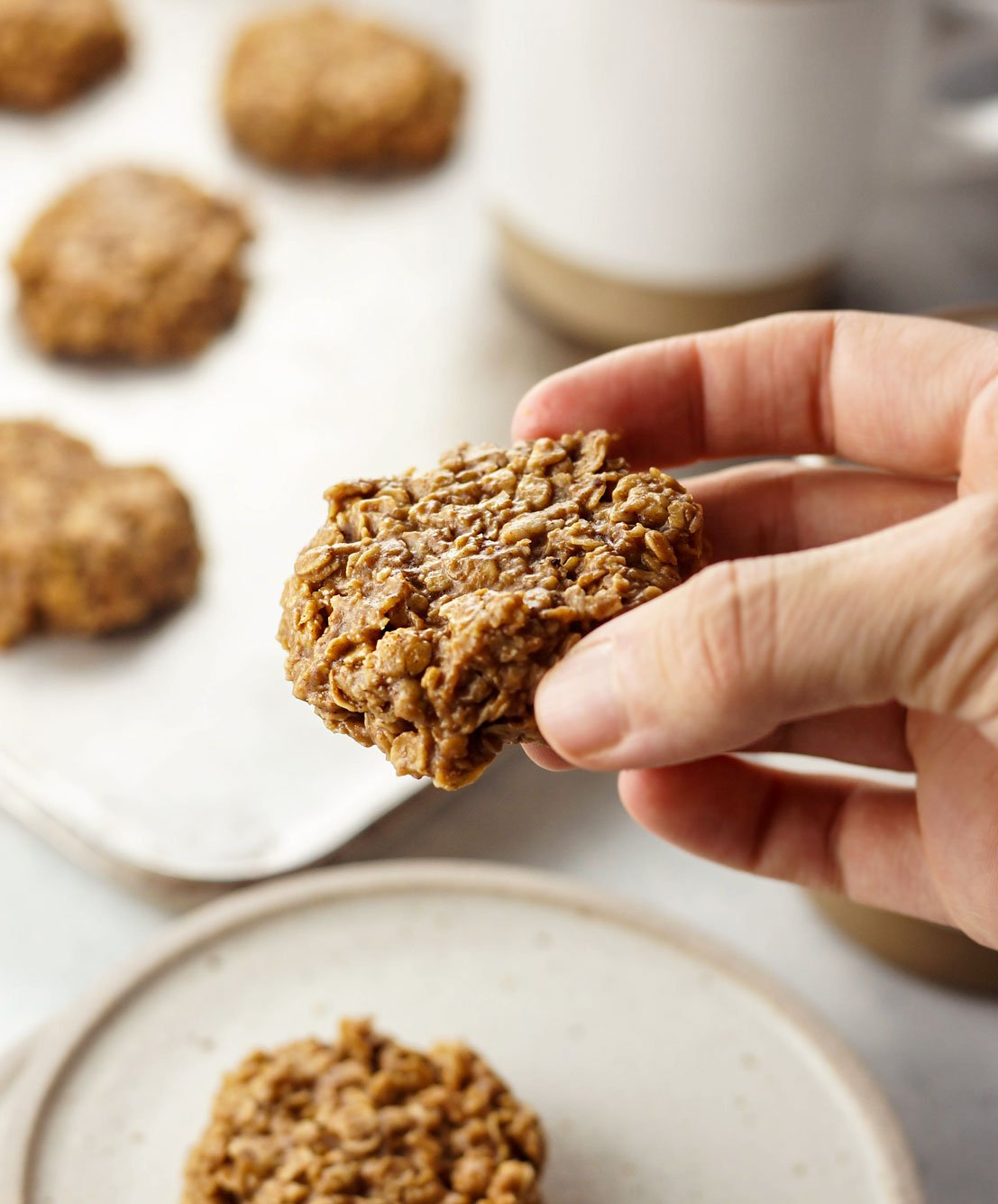 hand holding a no-bake spice cookie