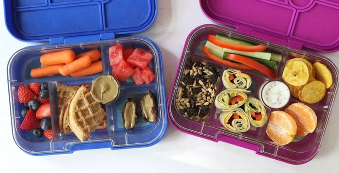 pink and blue bento lunch boxes