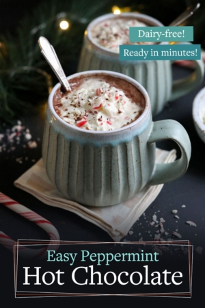 peppermint hot chocolate pin