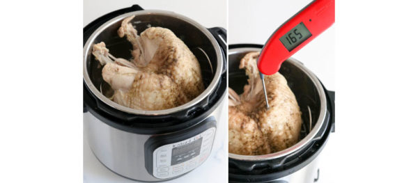 temperature check of cooked turkey