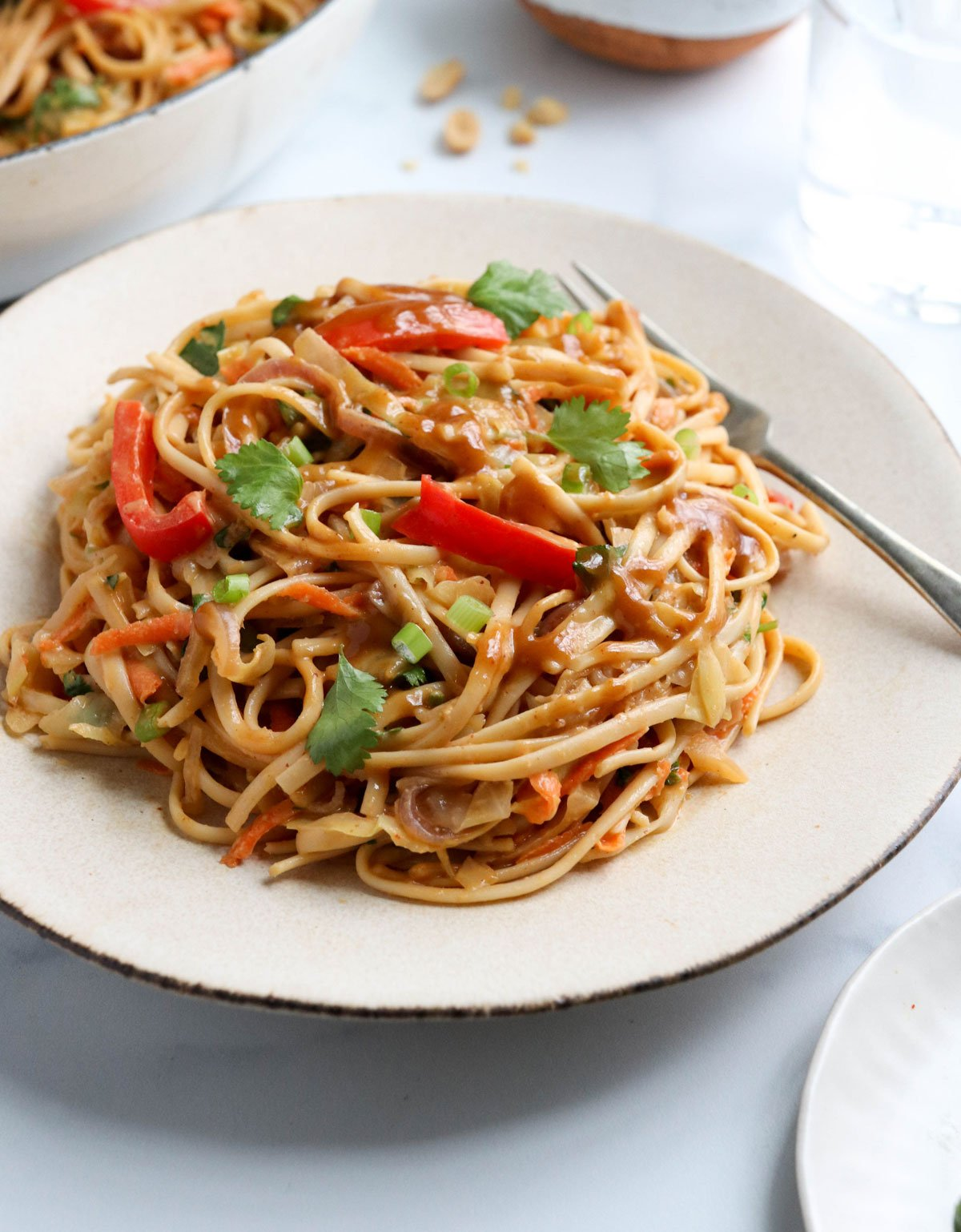 peanut noodles on a plate with fork