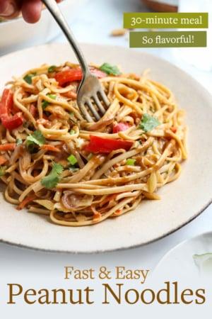 peanut noodles pin for pinterest